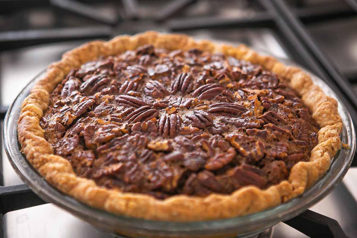 Best Pecan Pie Recipe pecan pie cooling after baking