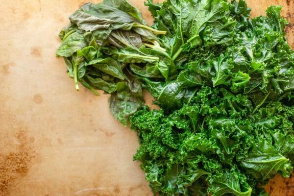 Blanched kale and basil piled on a baking sheet.