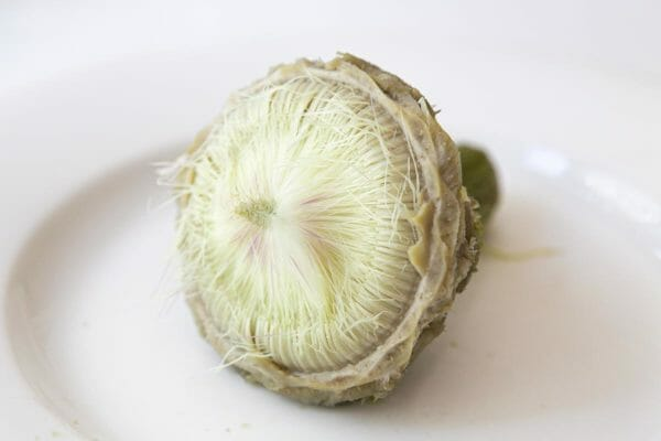 "What remains is the artichoke ""choke"""