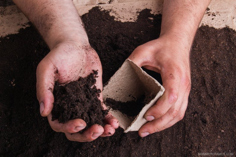 Placing gardening soil in container