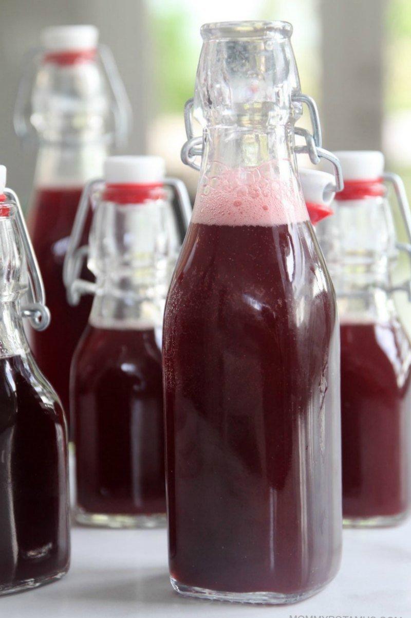 homemade elderberry soda recipe